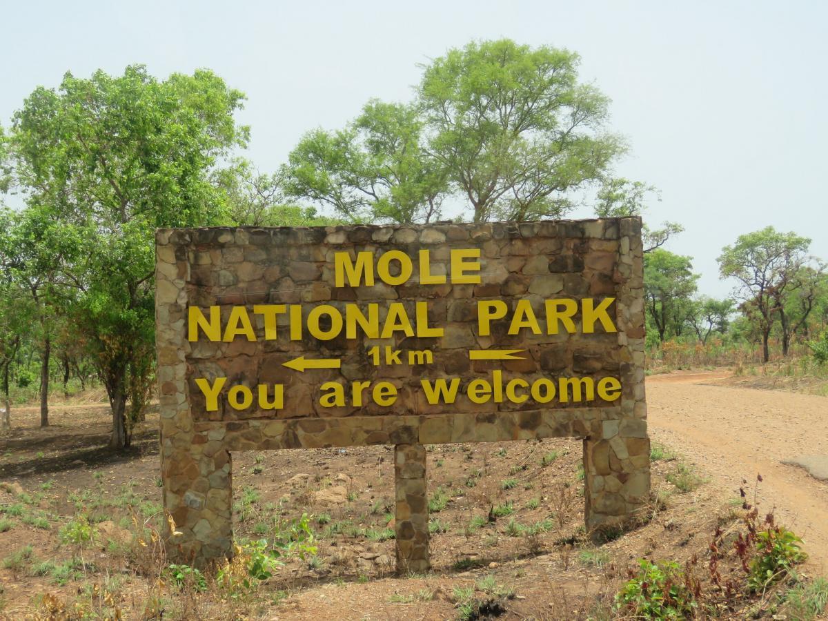Национальный парк Моле, Гана