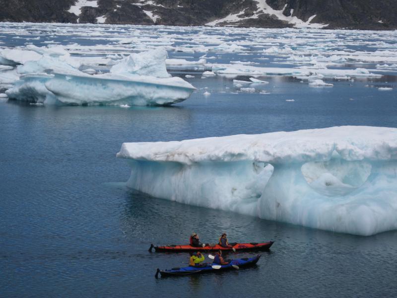 Гренландия OX90EDR
