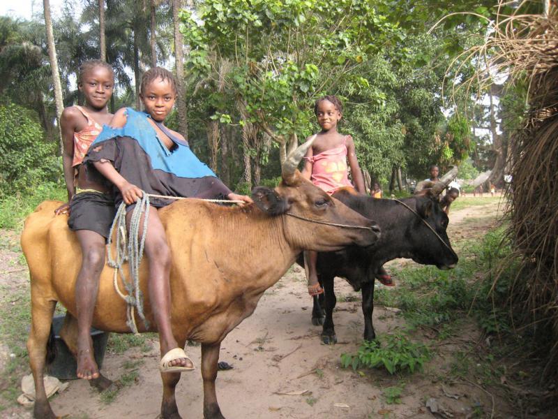 Гвинея Биссау J5UAP Туристические достопримечательности Каио.