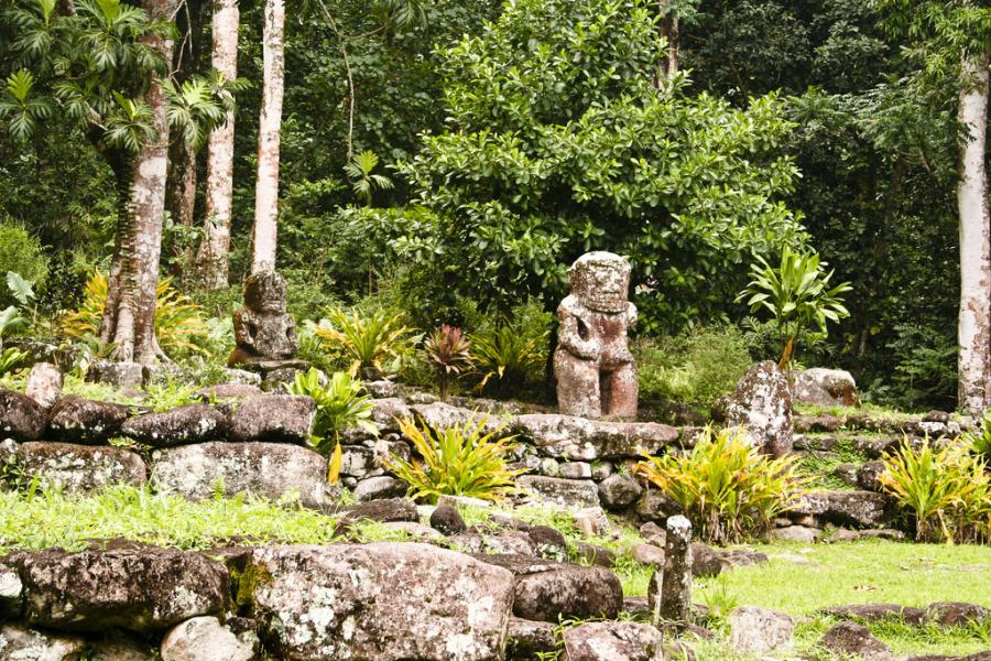 Hiva Oa Island TX5EG DX News Marquesas Islands Puamau petroglyphs.