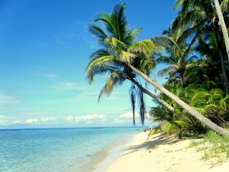 Остров Исла де Лобос Мексика XF2L