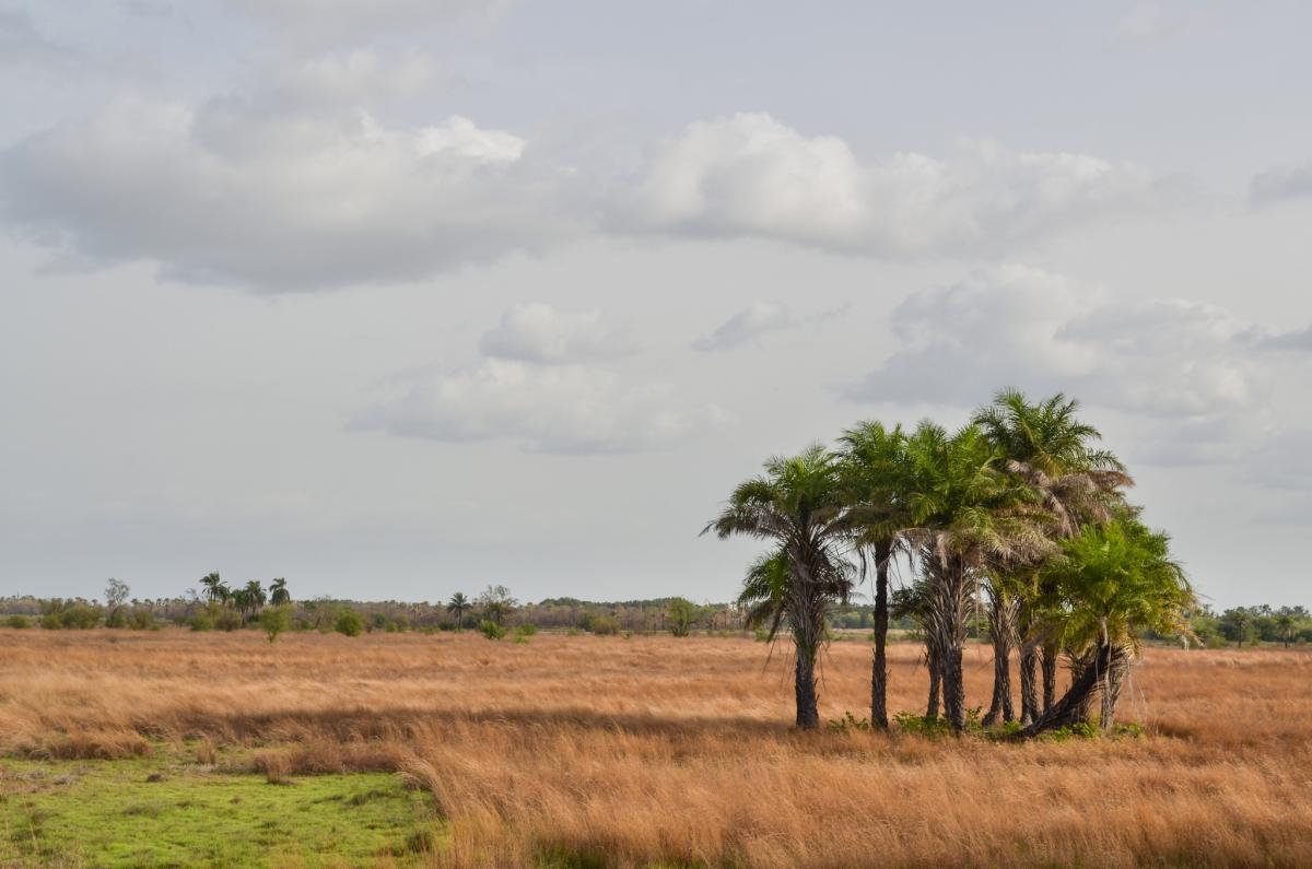 J52EC Bissau Bandandjan, Guinea Bissau.