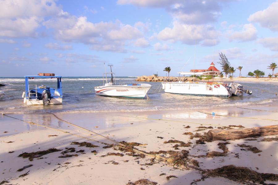Jamaica 6Y5/DJ7CF DX News