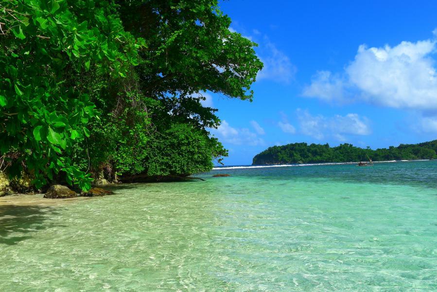 Jamaica 6Y5/DJ7CF Tourist attractions spot Monkey Island