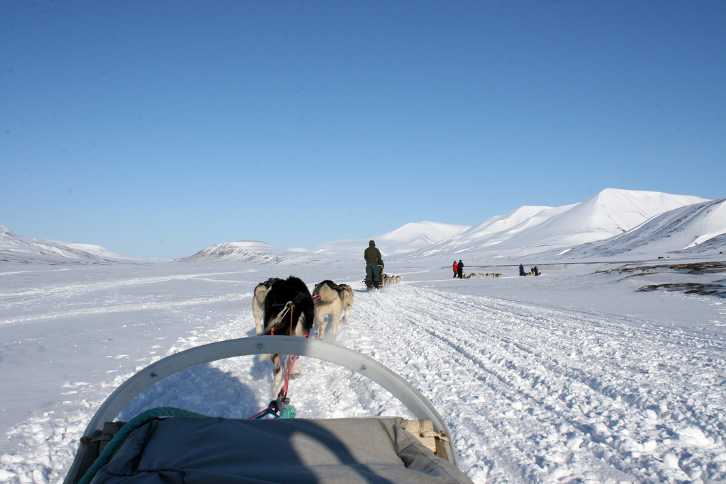 JW/DL4APJ Svalbard
