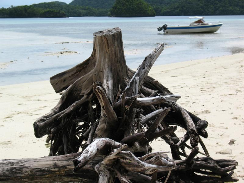 Koror Island T8EM T88CX T88DG T88CU T88CV Tourist attractions spot Palau