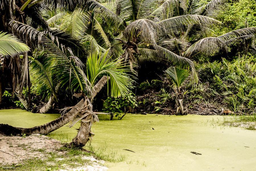 La Digue Island S79H Seychelles