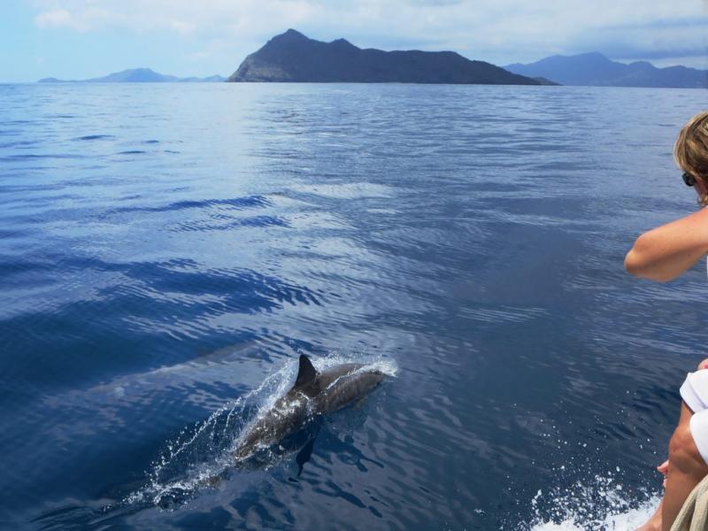 Остров Майотта FH/HB9AMO