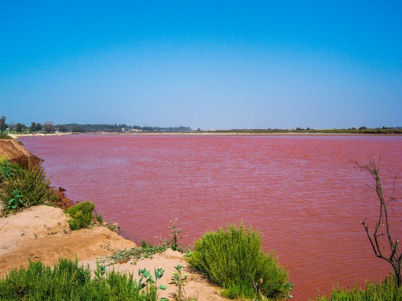 Morocco CN2YM Tourist attractions spot Red River