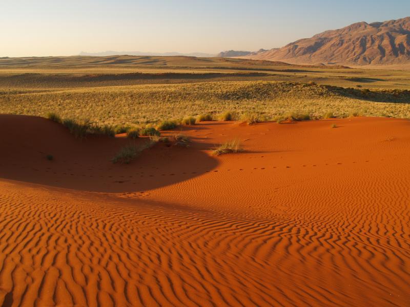 Namibia V5/NZ2P Wolwedans