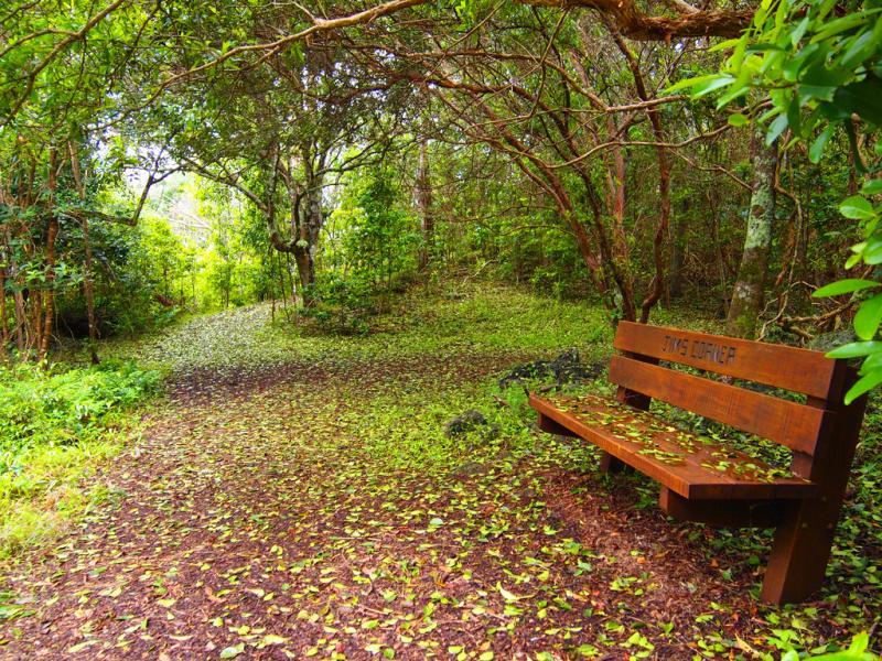 Norfolk Island VK9NM Jims Corner