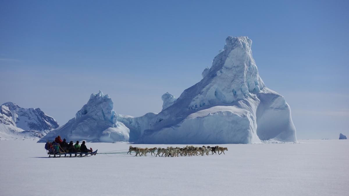 OX3LX На собачьей упряжке, Гренландия