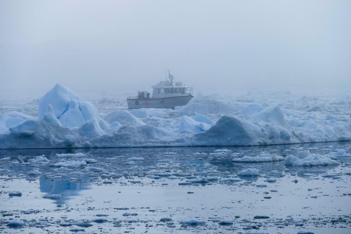 OX7A Greenland