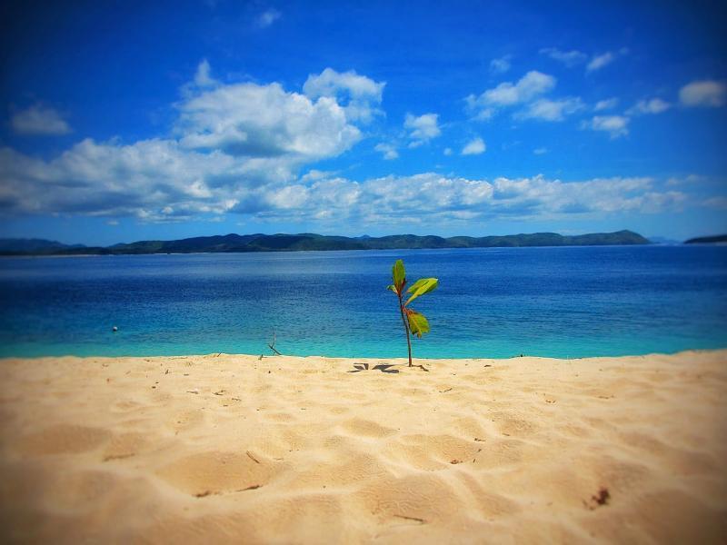 Palawan Island DU1/KE0BRZ DX News