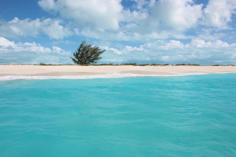 Providenciales Island Caicos Islands VP5K Tourist attractions spot Pine Cay.