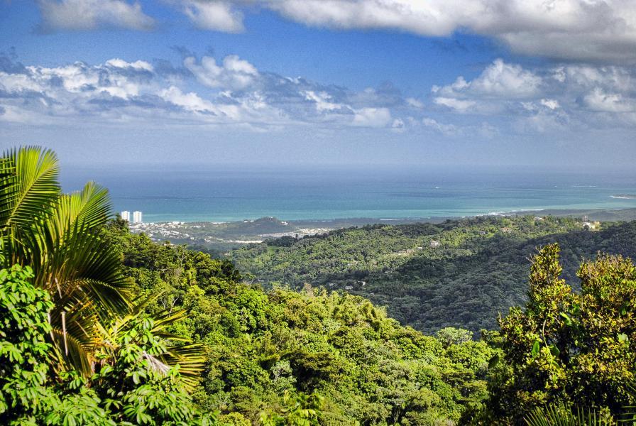 Пуэрто Рико KP4BD DX Новости Национальный парк Эль Юнке.