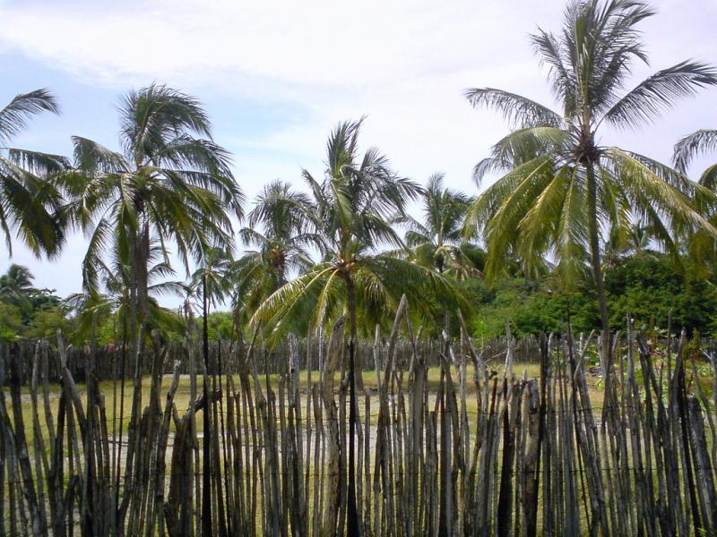 Puna Island HD2RRC/P DX News Ecuador
