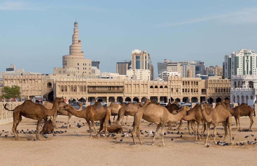 Qatar A7/MW0BRO Doha