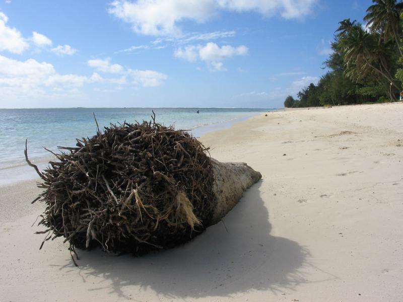 Rarotonga Island E51BAS