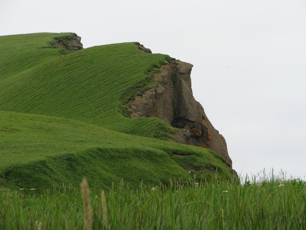 RI0ZF Bering Island DX News
