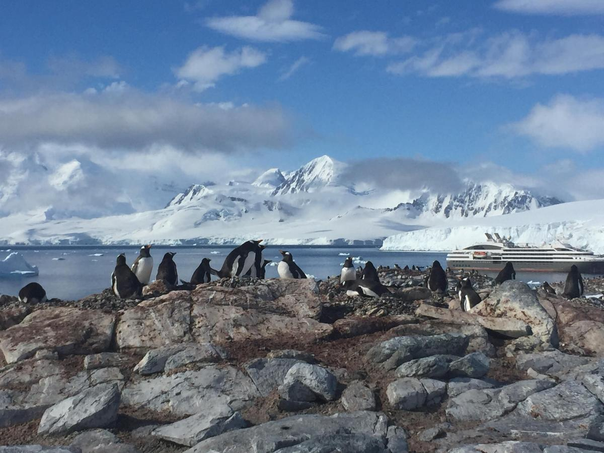 RI1ANV Антарктида