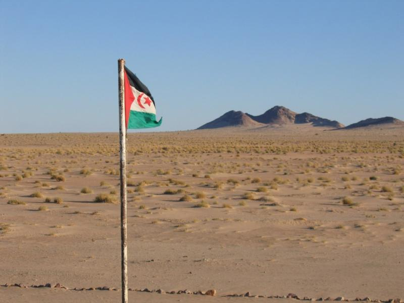 Sahrawi Arab Democratic Republic S07X DX News Flag