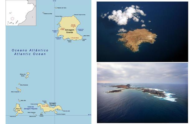 Selvagens Islands CQ9GXC DX News