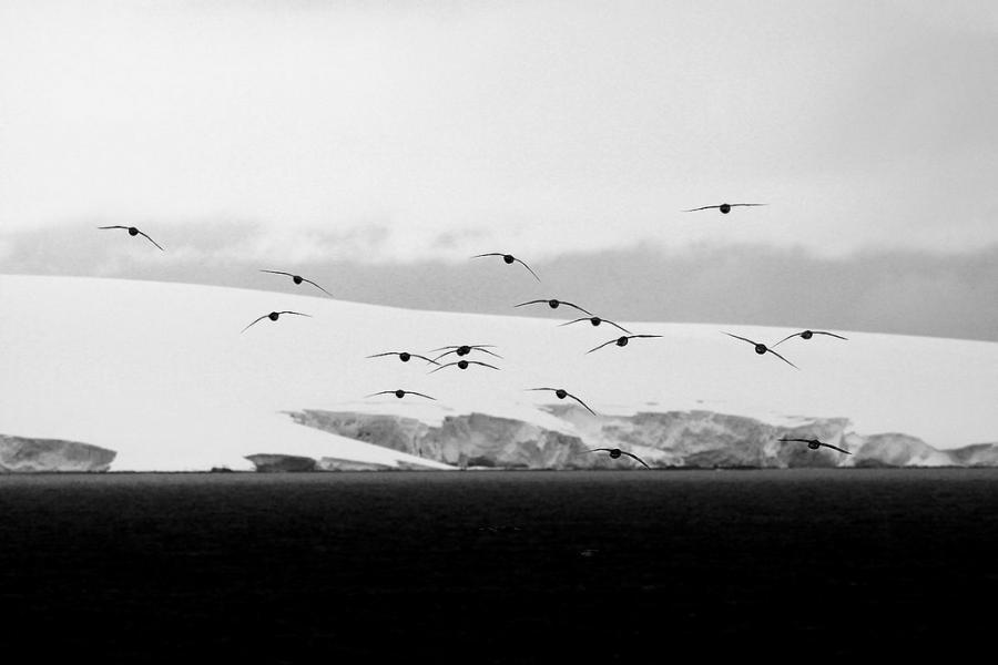South Shetland Islands LU4CJM/Z DX News