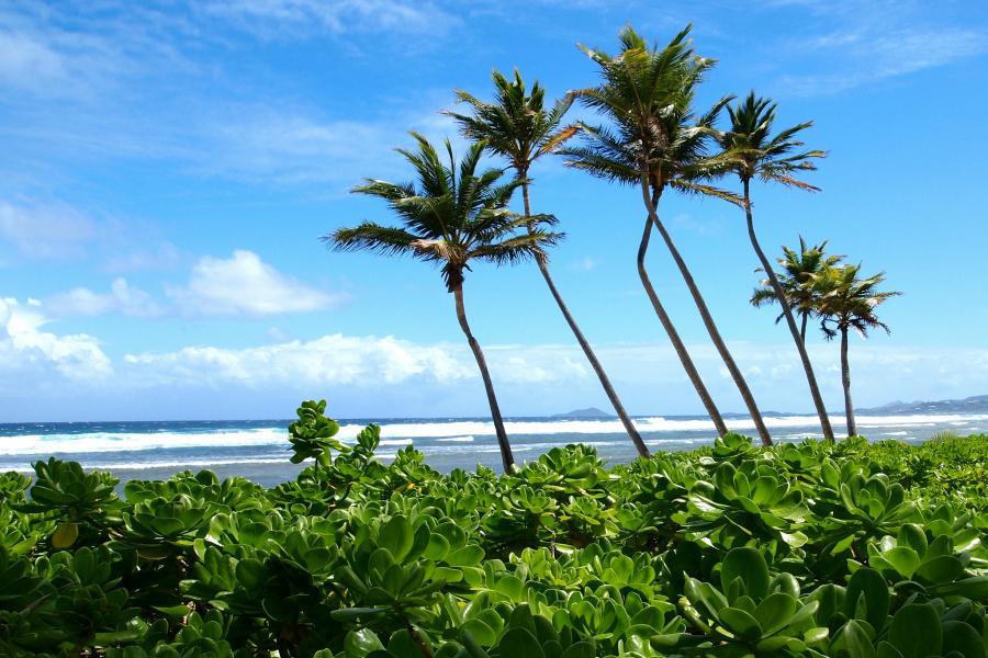 Остров Санта Крус Американские Виргинские острова WP2/K4ZGB KP2/N8WD KP2/AA4W KP2/AA4W DX Новости
