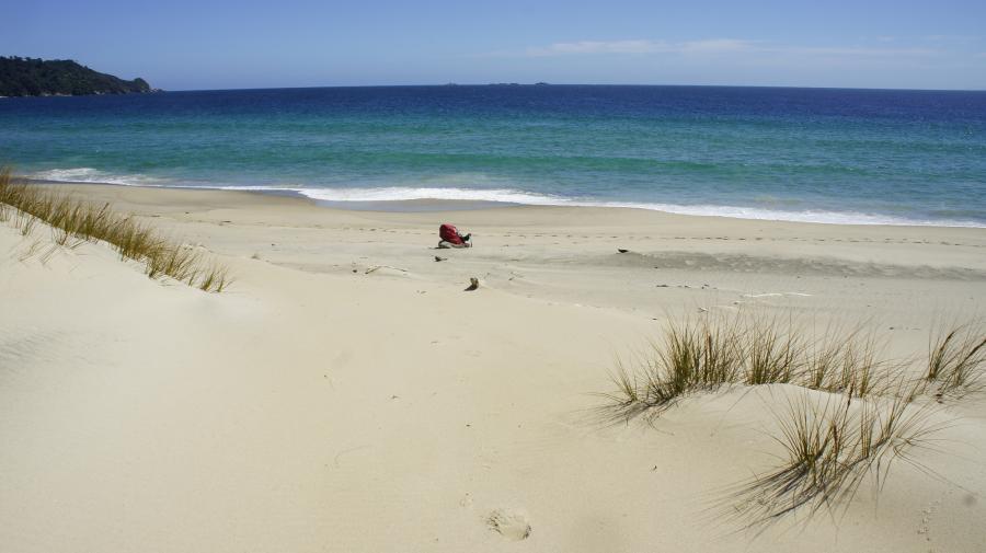 Stewart Island ZL/M1KTA Tourist attractions spot Smoky Beach