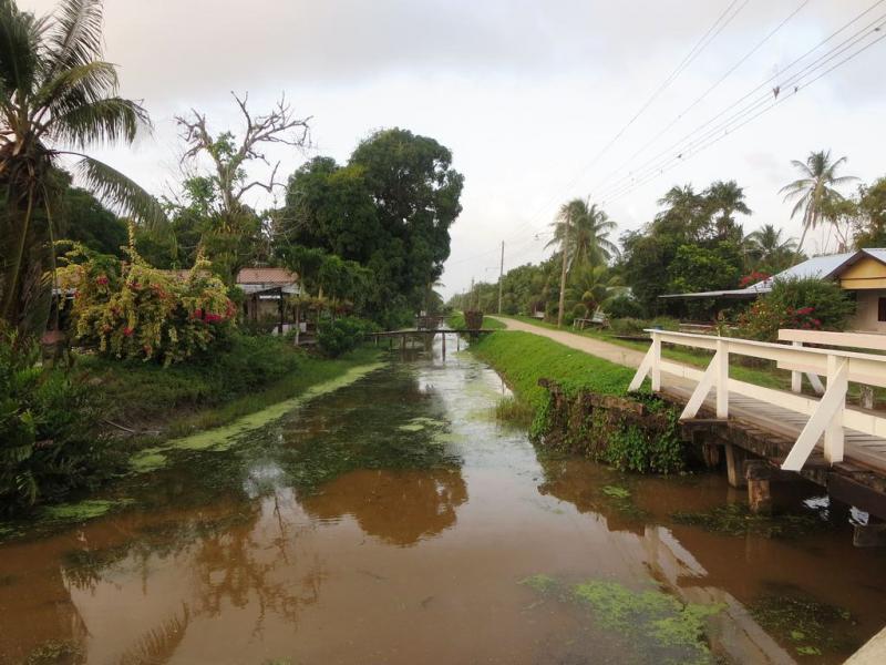 Suriname PZ5K DX News Canal Johanna Margaretha, Commowijne River.