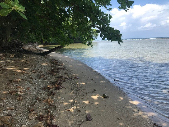 TE6DX Uvita Island Beach