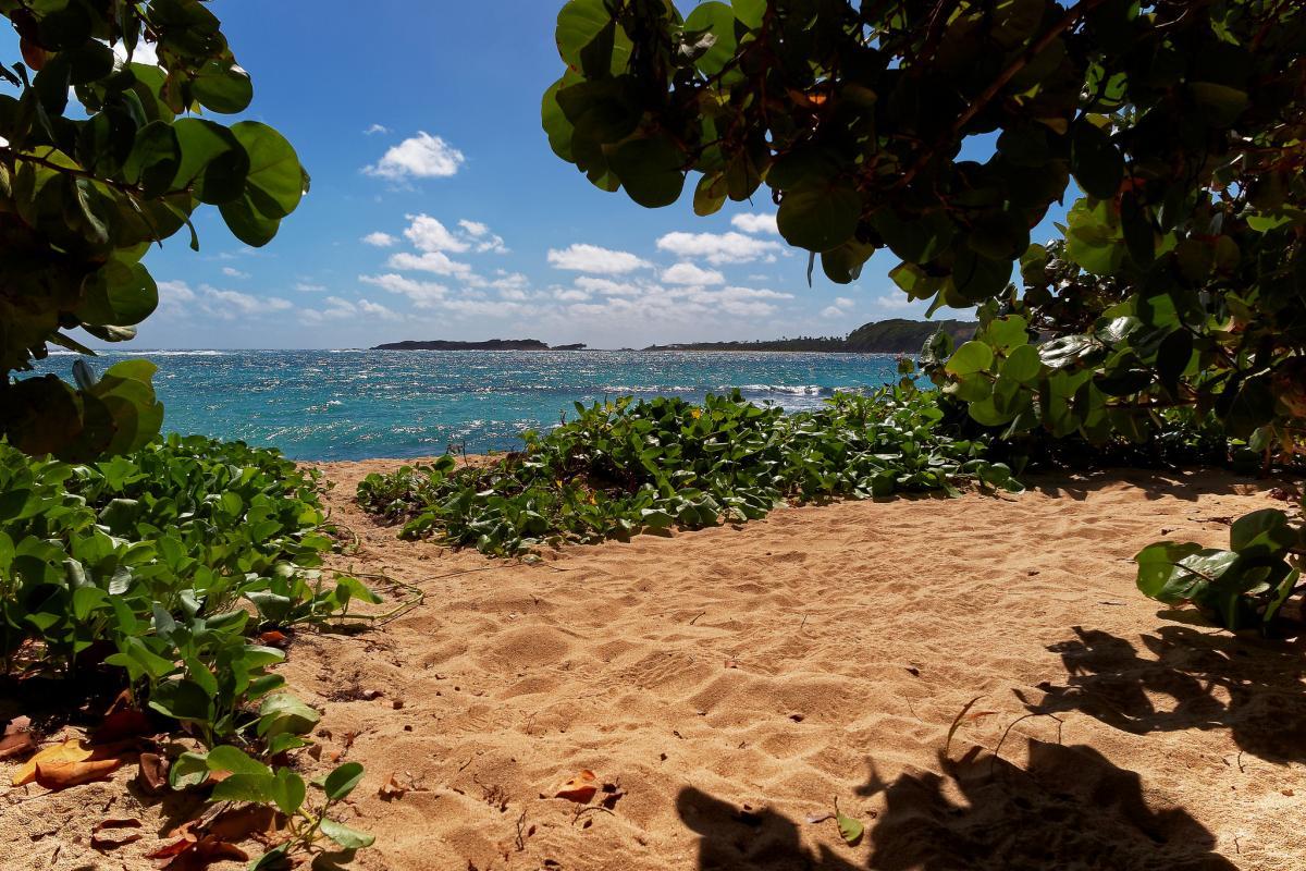 TO1J Остров Мартиника Туристические достопримечательности