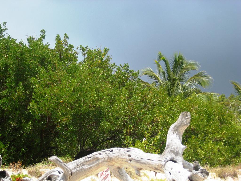 V26OC Остров Антигуа