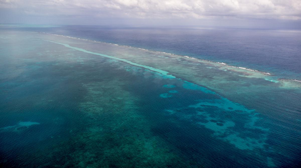 V31ZF Turneffe Atoll Tourist attractions spot