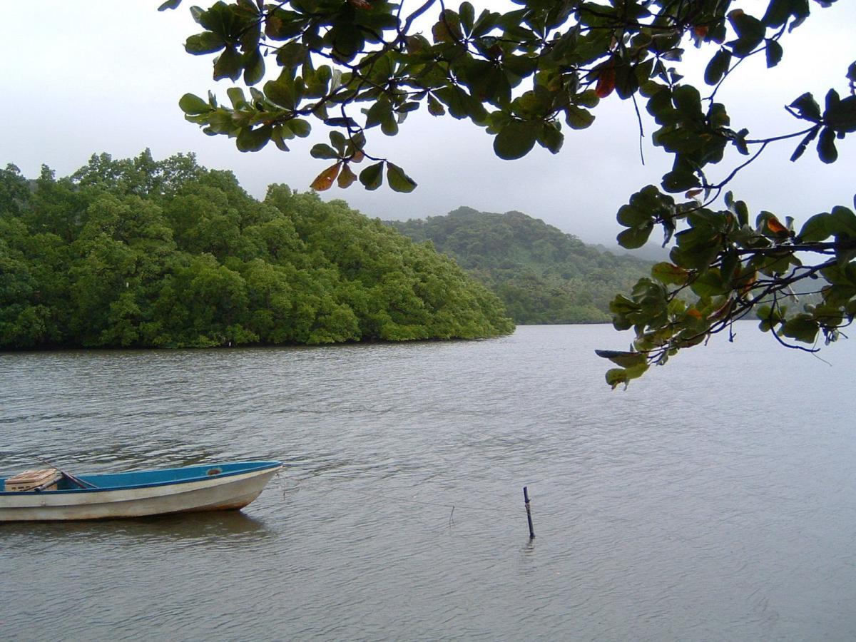 V63AKB48 V63AKB Pohnpei Island DX News