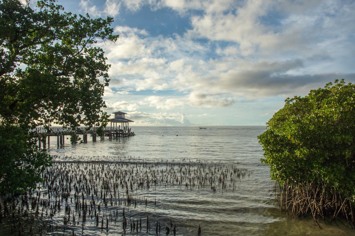 V63PSK Chuuk Islands 2019 DX News