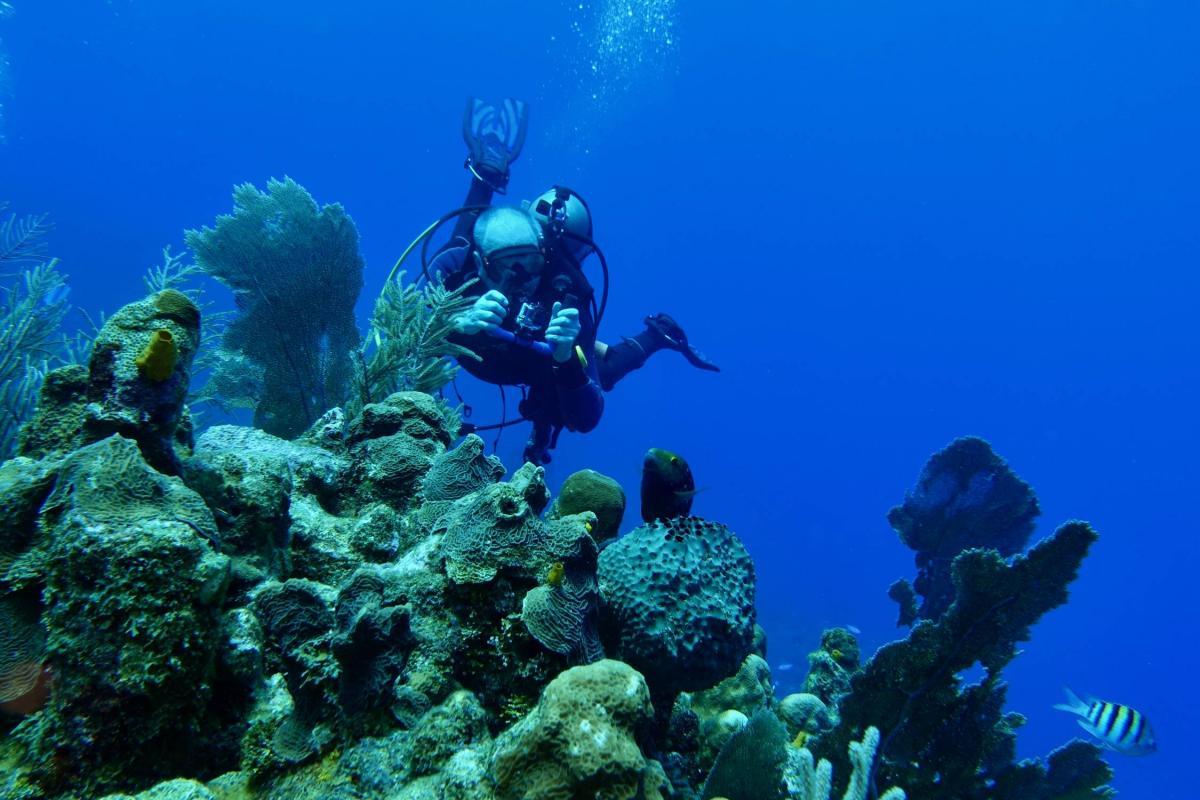 VE3VSM/HR9 Diving, Roatan Island Honduras 2019