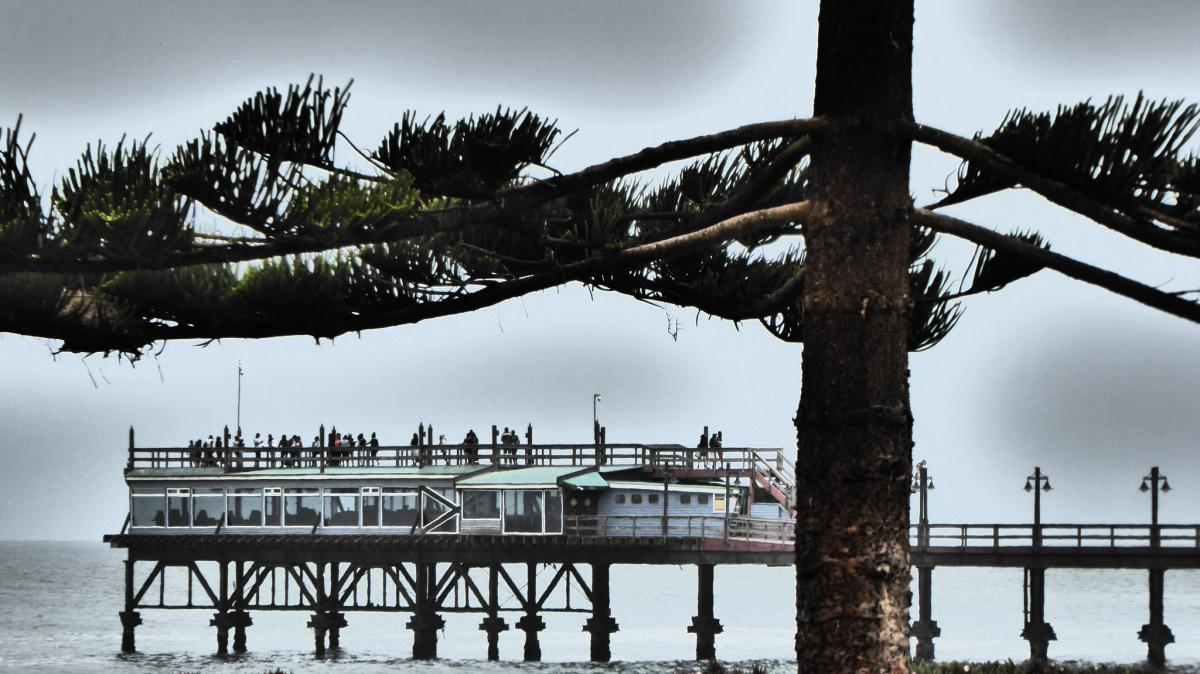 VK9BF VK9EV VK9QR VK9PM The Jetty, in Swakopmund, framed by Norfolk Island Pine. Tourist attractions spot
