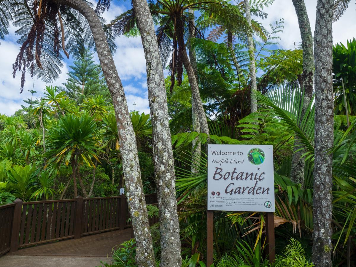 VK9/JO7GVC VK9/JK7LXU Ботанический сад, остров Норфолк. Туристические достопримечательности.