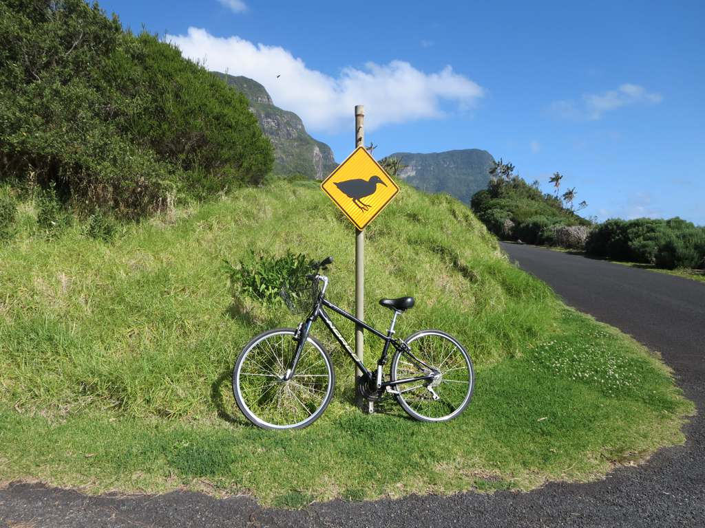 VK9LI Bicycle Rentals, Lord Howe Island. DX News.