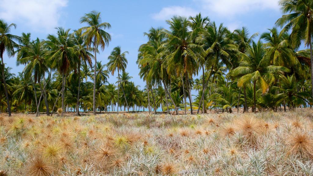 VU7T Lakshadweep Islands Tourist attractions spot