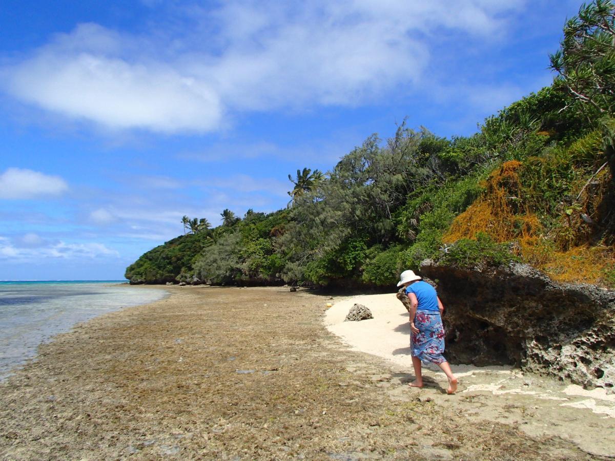 WH8/DL2AH Ofu Island American Samoa DX News