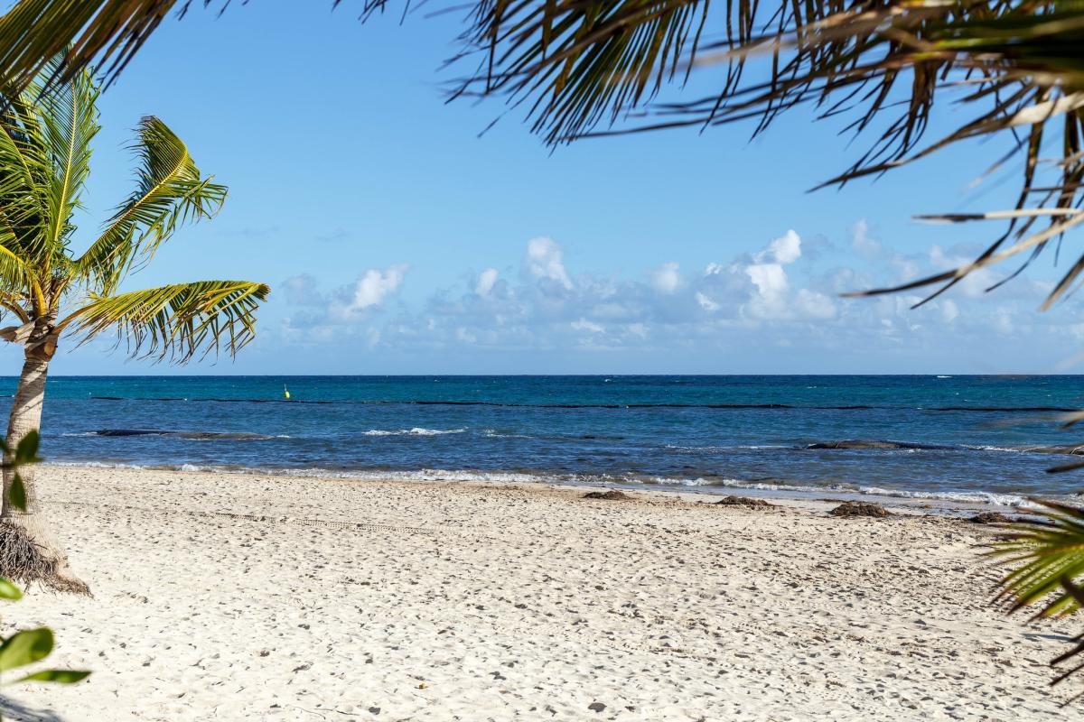 WJ2O/HI3 Доминиканская Республика Туристические достопримечательности
