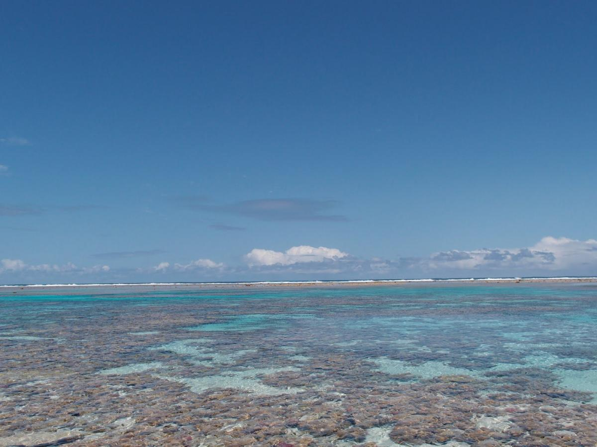 Conway Reef DX News 7 June 2019 3D2CR