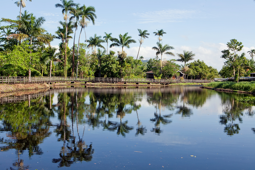 Jamaica 6Y6N Tourist attractions Jamaican paradise