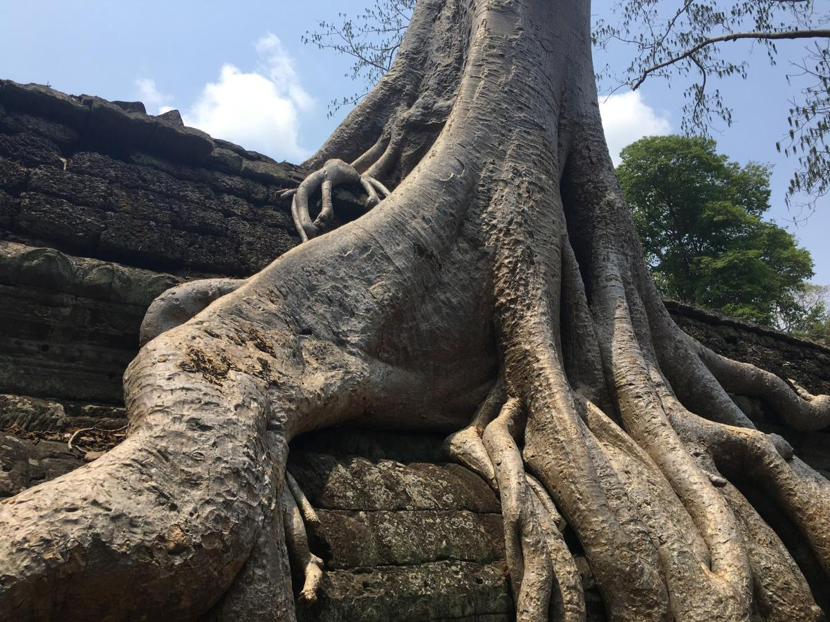 XU7AME Камбоджа