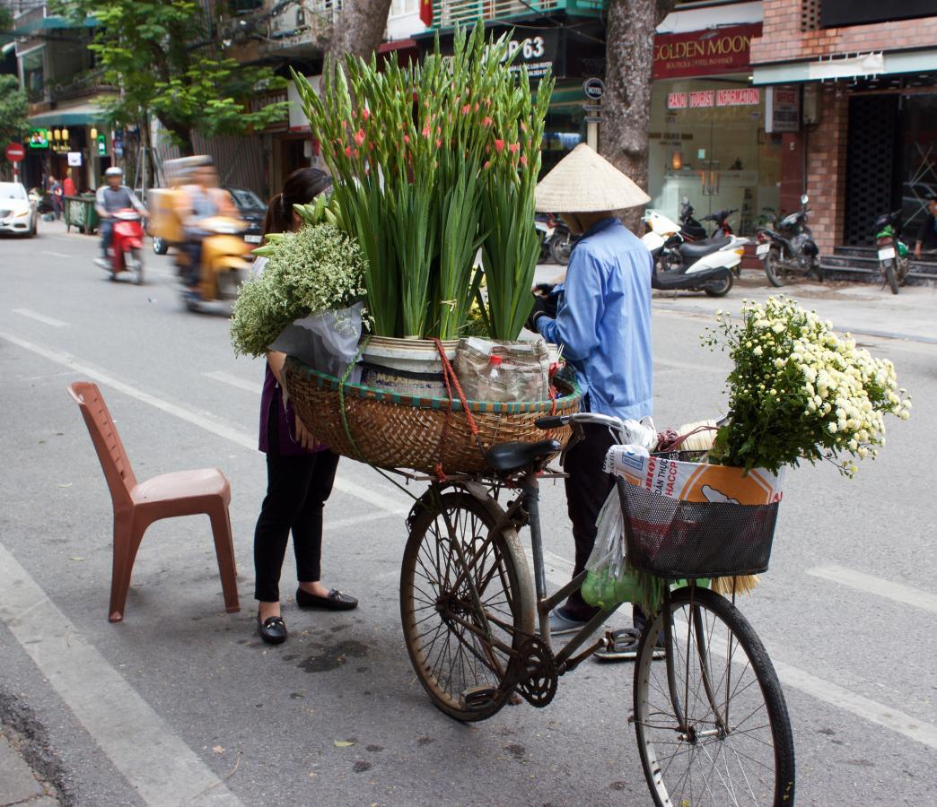 XV9YM Hanoi, Vietnam. DX News