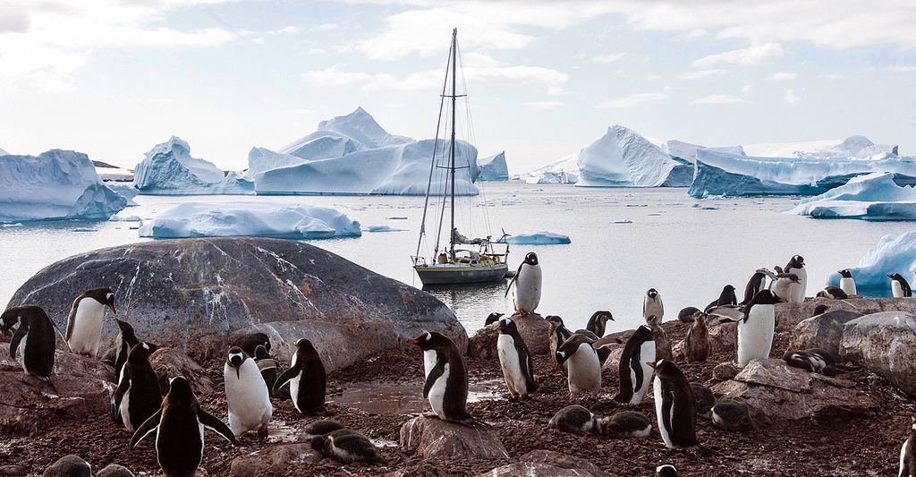 ZL5A Antarctica Tourist attractions spot