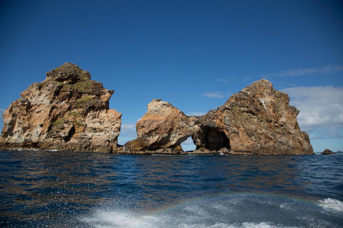 ZL7C Pitt Island, Chatham Islands.